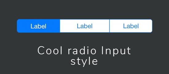 Делаем красивые кнопки выбора (стилизация radio input)